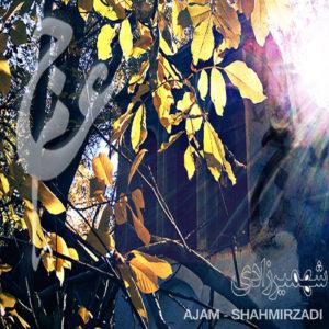 shahmirzadi-artwork-with-english